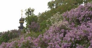 Церковь, крест и сирень в холме акции видеоматериалы