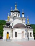 церковь правоверная Украина Стоковое Фото