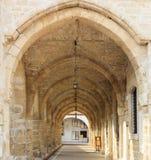 Церковь Святого Лазаря, Ларнаки Кипра крупного плана eyedroppers высокий разрешения взгляд очень Стоковые Изображения
