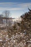 Церковь страны в зиме стоковые изображения