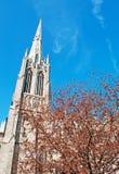 Церковь троицы и дерево в Уолл-Стрите, финансовый район Нью-Йорка Стоковые Фото