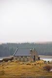 Церковь чабана на озере Tekapo Стоковая Фотография RF