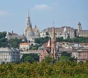 Церковь Matthias и другие здания стоковая фотография rf