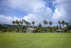 Церковь Ona Kava Lanakila Ihiihi o Iehowa стоковые изображения rf