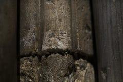 Церковь Sepulcher падуба Стоковая Фотография RF