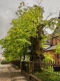 Церковь St James в Sandomierz Стоковые Фотографии RF