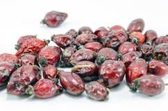 Целебные ягоды Стоковые Фото