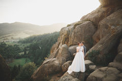 Целовать пар свадьбы оставаясь над красивым ландшафтом Стоковая Фотография RF