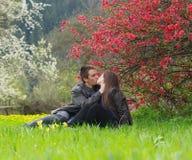 целовать пар Стоковое фото RF