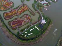 Цзянсу yancheng: воздушное фотографирование 30 миллионов тюльпанов в Нидерландах отравляет стоковые изображения rf