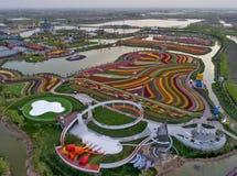Цзянсу yancheng: воздушное фотографирование 30 миллионов тюльпанов в Нидерландах отравляет стоковое изображение