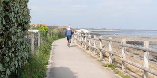 Цикл катания человека на путях велосипеда ile de Re на крае Атлантического океана Франции в сети шаблона знамени сети стоковое фото