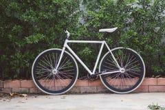 Цикл велосипеда Стоковое Изображение