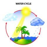 Цикл воды бесплатная иллюстрация