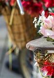 Цикл цветка Стоковая Фотография RF