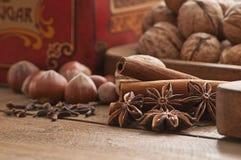 циннамон рождества анисовки варя ингридиенты spices ручки звезды Стоковое Фото