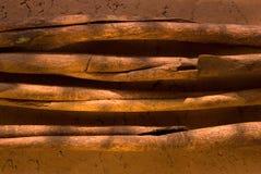 циннамон Стоковое фото RF