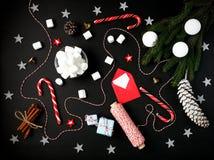 Циннамон v конуса сосны ветвей ели состава Нового Года рождества Стоковые Изображения