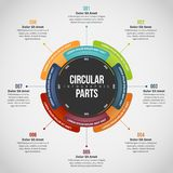 Циркуляр разделяет Infographic Стоковые Изображения RF