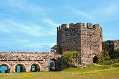 цитадель средневековая стоковое фото