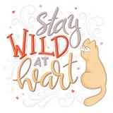 Цитата литерности руки вектора - останьтесь одичалый на сердце - с котом и декоративными элементами Стоковые Фото