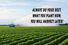 Цитата сельскохозяйственного угодья Стоковая Фотография RF