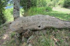 Цитата француза выгравированная на древесине Стоковое Изображение