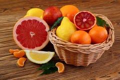 Цитрусовые фрукты - апельсины, лимоны, tangerines, грейпфрут Стоковое Фото