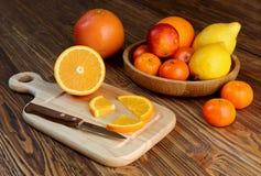 Цитрусовые фрукты - апельсины, лимоны, tangerines, грейпфрут Стоковые Изображения