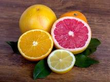 Цитрусовые фрукты куска Стоковое Фото