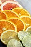 Цитрусовые фрукты с апельсином, лимоном, грейпфрутом и известкой Стоковые Фотографии RF