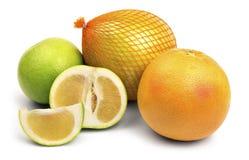 цитрусовые фрукты установили Стоковые Фото