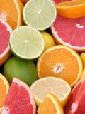 цитрусовые фрукты Стоковые Фото