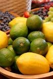 цитрусовые фрукты Стоковое Изображение RF