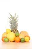цитрусовые фрукты стоковая фотография