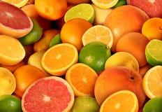 Цитрусовые фрукты Стоковые Фотографии RF