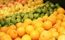 цитрусовые фрукты Стоковые Изображения RF