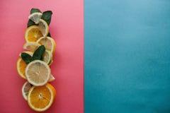 Цитрус на красочной предпосылке Много кусков листьев лимона, апельсина, известки и мяты лежат совместно серия плодоовощей Стоковая Фотография RF