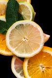 Цитрус на черной предпосылке Много кусков листьев лимона, апельсина, известки и мяты лежат совместно серия плодоовощей витамины Стоковое Фото
