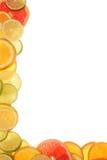 цитрус стоковое изображение rf