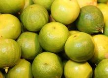 Цитрус Bergamia или зеленый бергамот для продажи к greengrocery стоковая фотография rf
