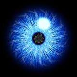 цифровая радужка Стоковые Фото