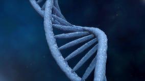 цифровое дна Вращая стренги дна собраны от индивидуальных элементов принципиальная схема проектируя генетическая научную акции видеоматериалы