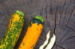 цукини Зелен-апельсина, стручки белых фасолей и красные чили Стоковые Изображения RF