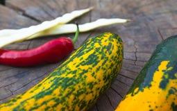 цукини Зелен-апельсина, стручки белых фасолей и красные чили Стоковая Фотография