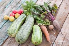 Цукини, моркови, свеклы, яблоки и груши на wo Стоковое Изображение RF