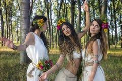 Цыганские девушки в лесе Стоковое Изображение