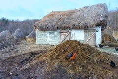 Цыганский дом фермы в Румынии Стоковые Изображения