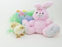 цыпленоки заполненная пасха зайчика младенца Стоковое Изображение