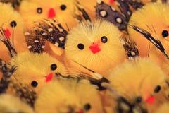 цыпленоки пасха немногая Стоковое Изображение RF